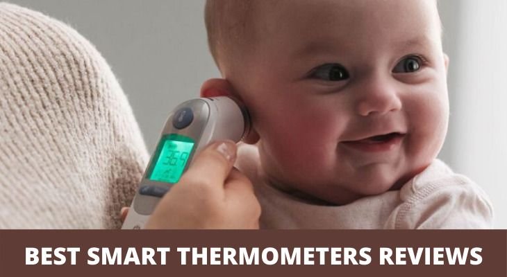 BEST SMART THERMOMETERS REVIEWS